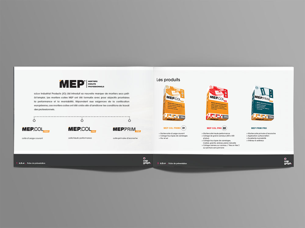 MEP research_2